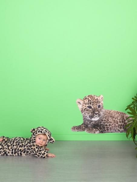 Muursticker luipaard