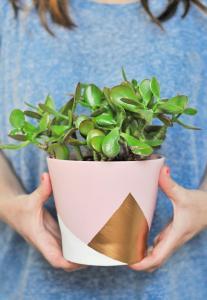 Zet je bloem- en sierpot in de verf!